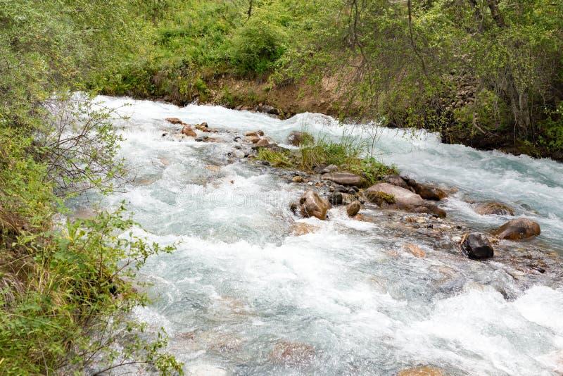 L'eau rugueuse en rivière de montagne image libre de droits