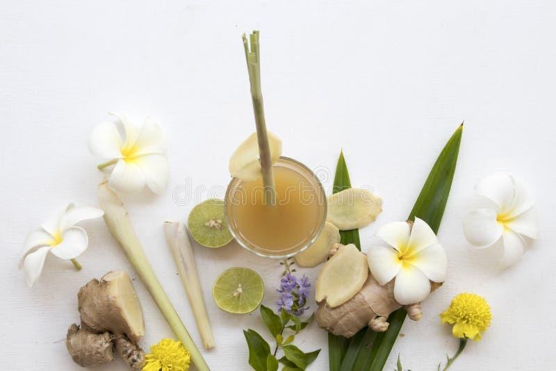 L'eau saine de fines herbes de cocktail de styrup de gingembre de boissons images stock