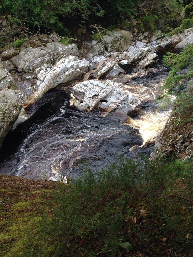 L'eau sauvage images libres de droits