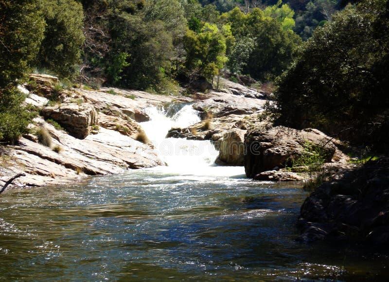 L'eau sauvage et petite cascade - rivière dans Yosemite, séquoia et parc national des Rois Canyon photo libre de droits