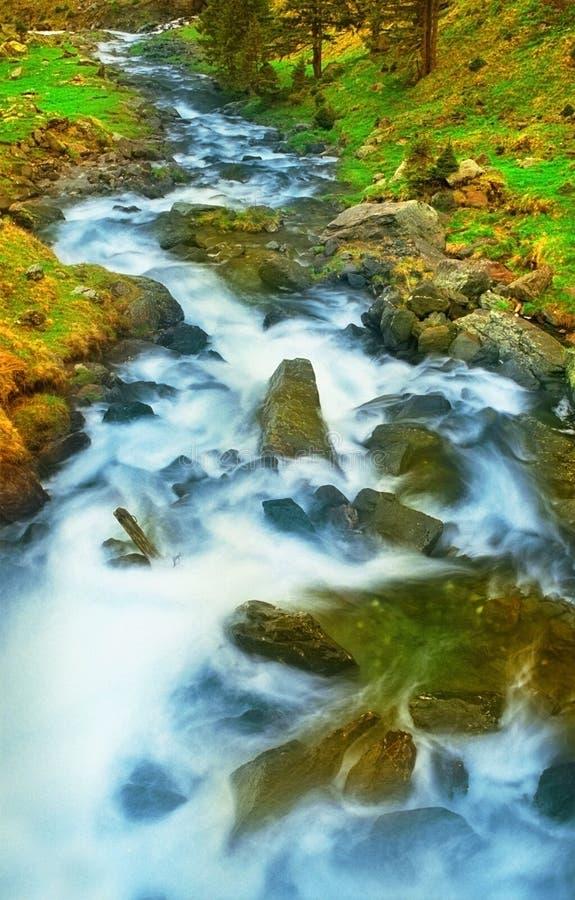 L'eau se précipitante dans un flot de montagne photo libre de droits