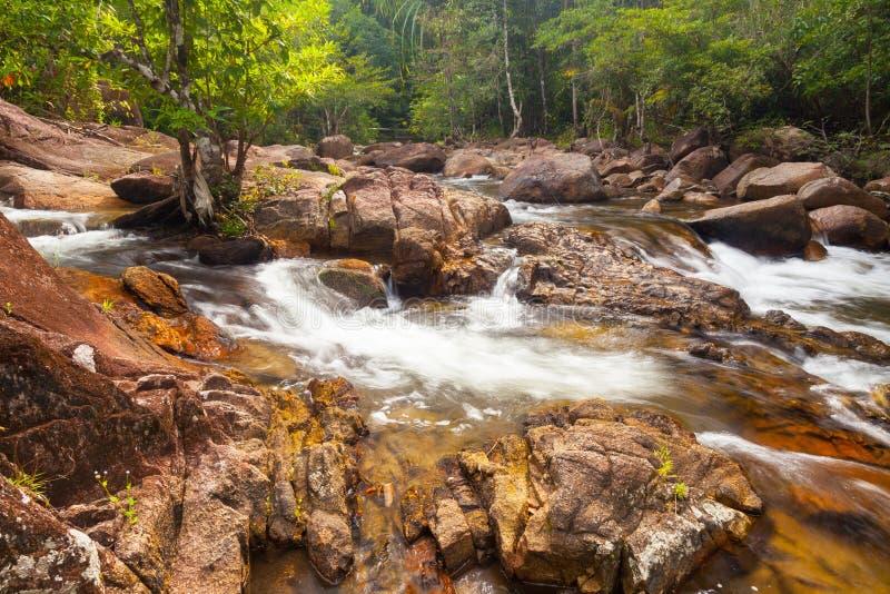 L'eau tombe cascade sur la forêt tropicale photographie stock libre de droits
