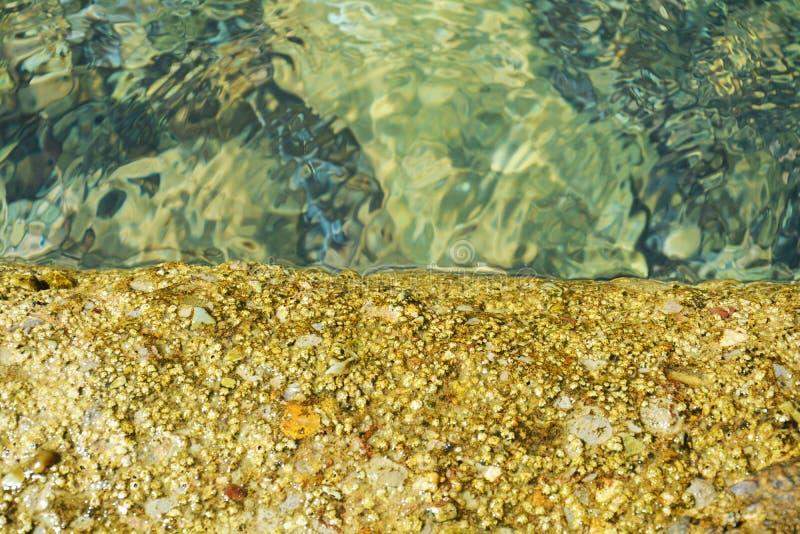 L'eau trasparent d'or lapide l'herbe, vallées de décomposition, fond naturel images stock