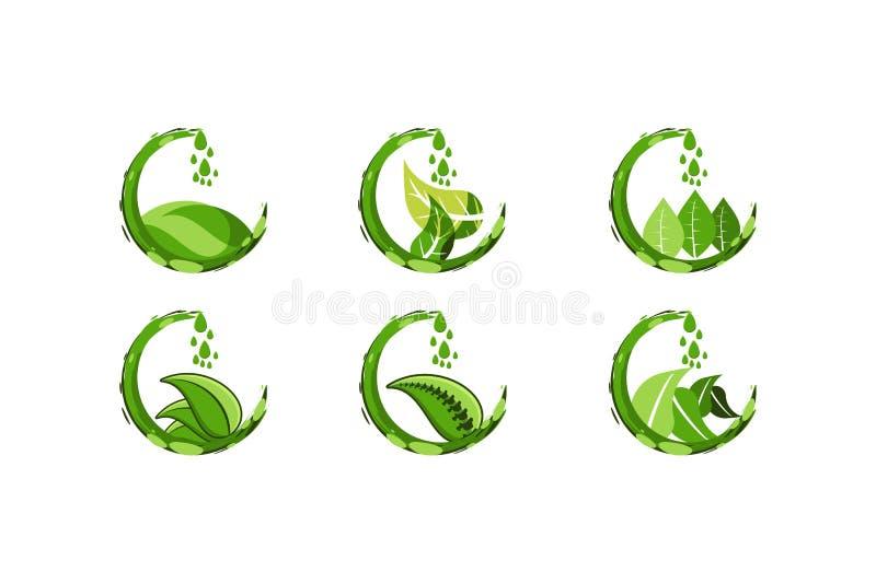 L'eau verte réglée de jus de baisse, et la feuille, logo sain de nourriture conçoit l'inspiration d'isolement sur le fond blanc illustration de vecteur