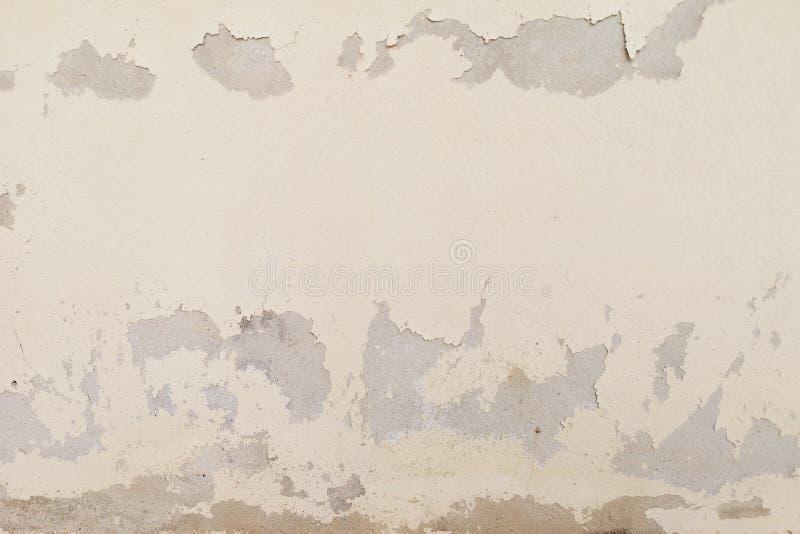 L'eccessiva umidità può causare la parete della pittura della sbucciatura e della muffa quali le perdite dell'acqua piovana o le  fotografia stock