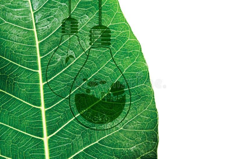 L'ecologia e pensa la progettazione di massima verde immagini stock libere da diritti