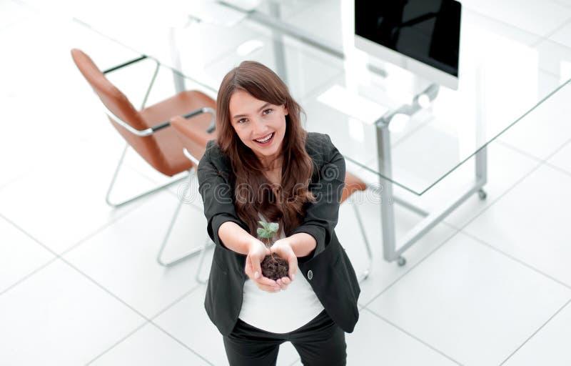 L'ecologo della donna vi mostra un germoglio fresco fotografie stock libere da diritti