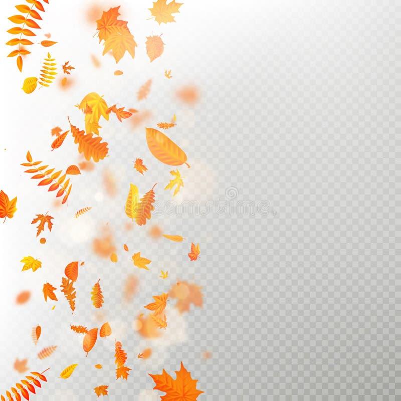 L'effetto delle foglie cadenti di autunno mette a strati con la sfuocatura bassa di DOF Modello autunnale di caduta del fogliame  illustrazione di stock