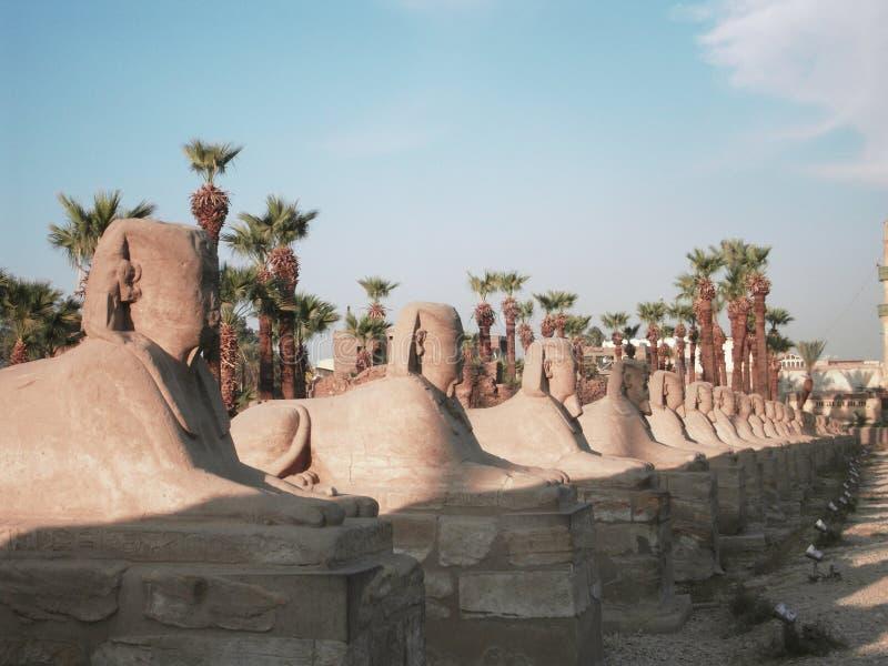 l'Egypte antique photos libres de droits