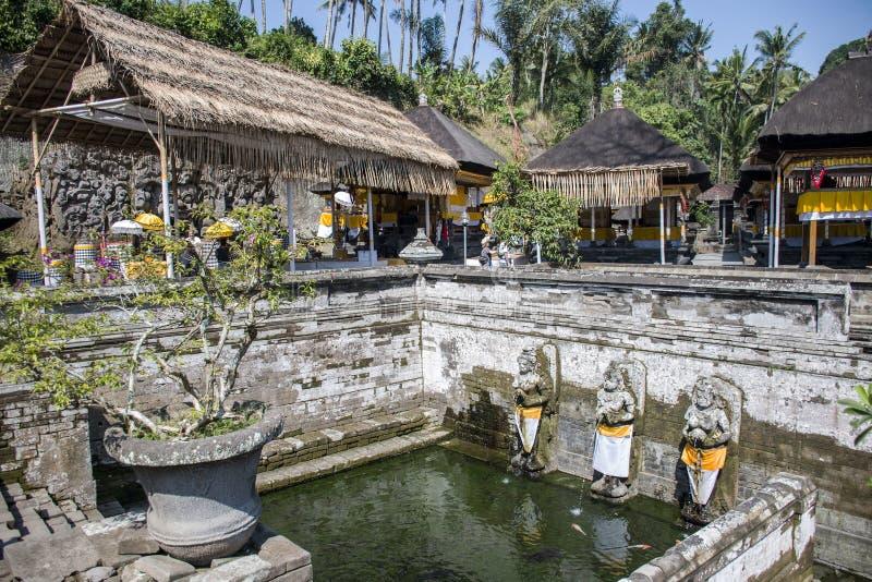 L'elefante di Bali frana il tempio 2 di Ubud Goa Gajah immagini stock libere da diritti