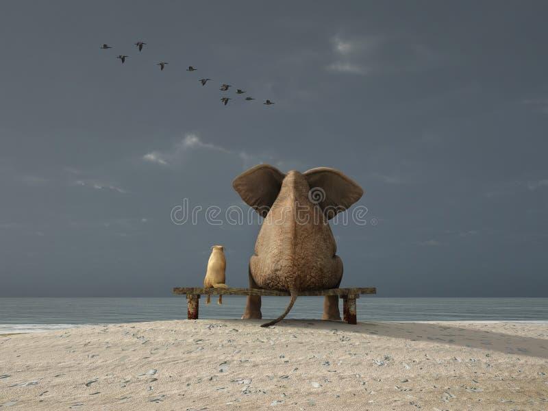 L'elefante ed il cane si siedono su una spiaggia