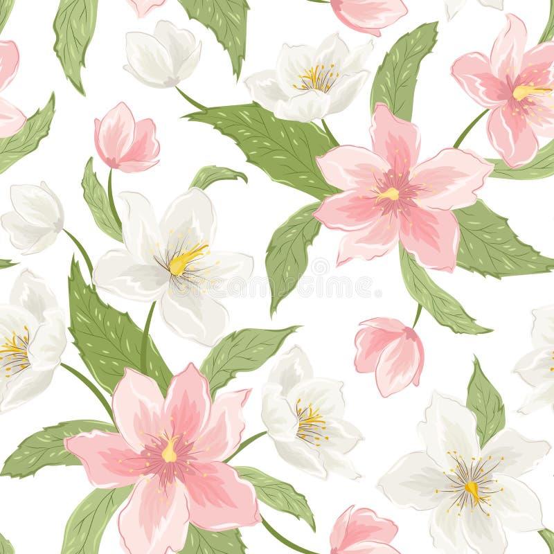L'elleboro di sakura della magnolia fiorisce il bianco rosa illustrazione di stock