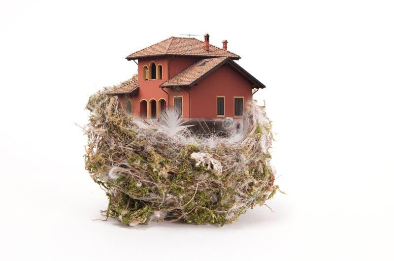 L'emboîtement de l'oiseau avec la maison photos libres de droits