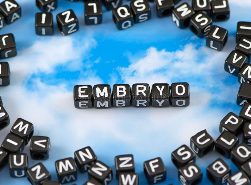 L'embrione di parola fotografia stock libera da diritti