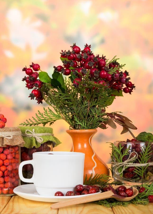 L'encore-vie d'automne de la tasse de tisane et de baies sur le fond des feuilles rouges image stock