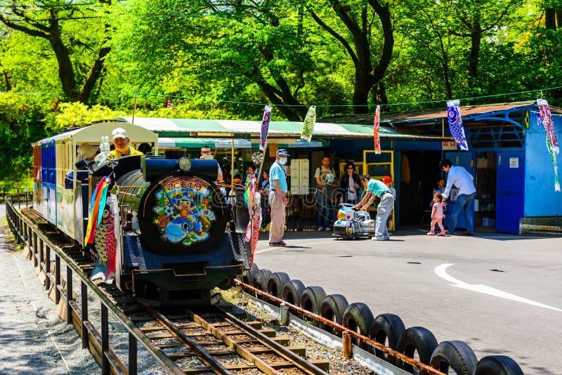 L'enfant amusent le train derrière le château d'Odawara image libre de droits