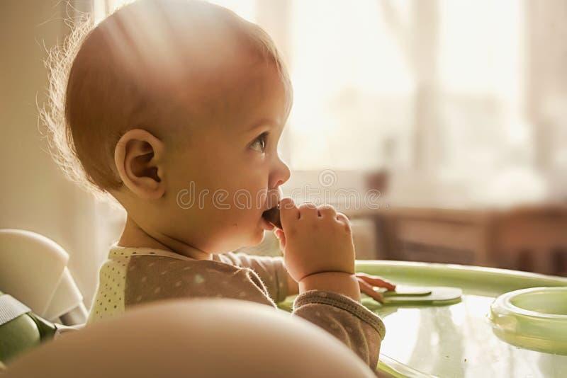 L'enfant d'un an mange le biscuit, mâche les premières dents, fond pour la bannière au sujet de l'aliment pour bébé image stock