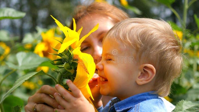 L'enfant dans des bras de sa mère jouant avec la fleur images libres de droits