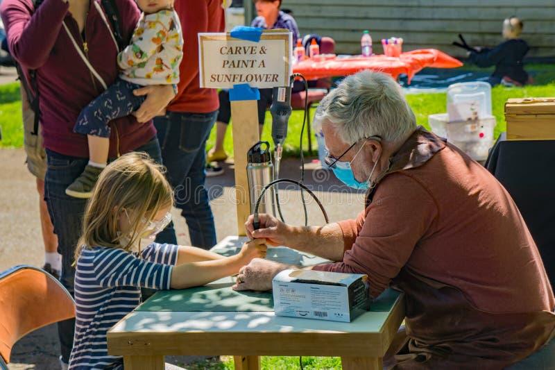L'enfant en bas âge apprend à découper un tournesol photo libre de droits