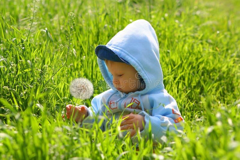 L'enfant explorent la nature photographie stock