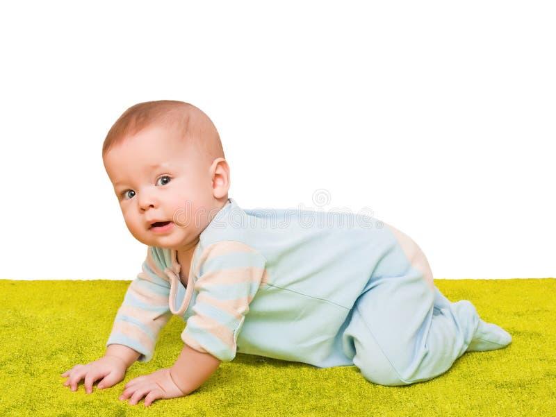 l 39 enfant rampe sur un tapis vert mou image stock image du fluage sain 18947475. Black Bedroom Furniture Sets. Home Design Ideas