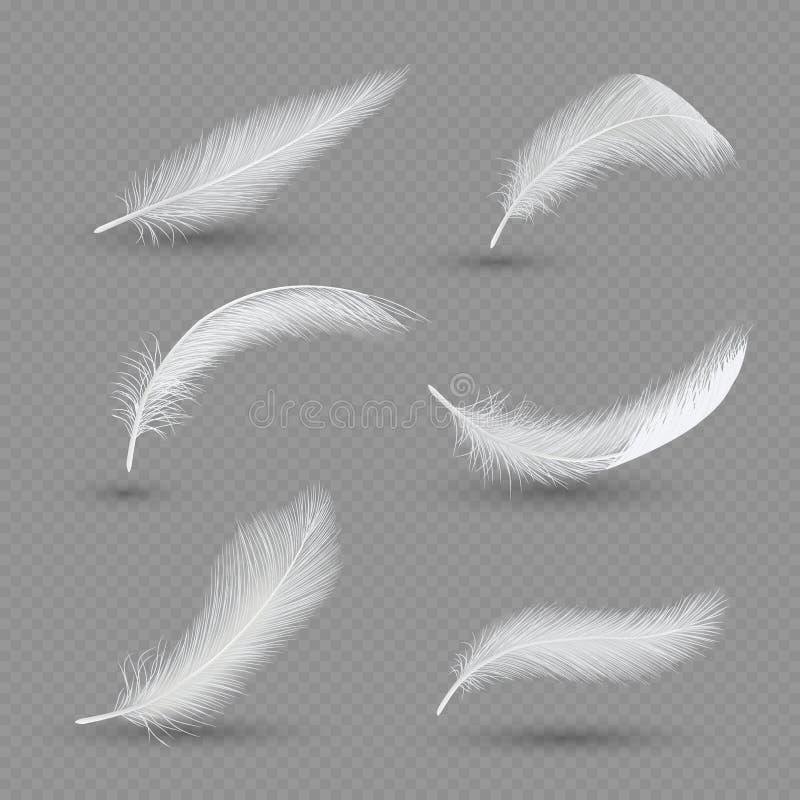 L'ensemble blanc d'icône de plume d'oiseaux, dirigent l'illustration réaliste illustration stock