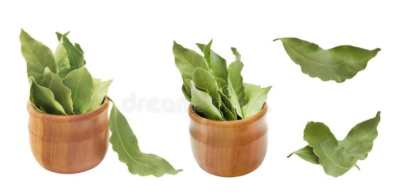 L'ensemble de baie aromatique sèche part dans une cuvette en bois d'isolement sur le blanc Photo de récolte de baie de laurier po photographie stock