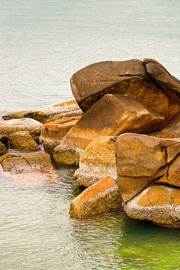 L'ensemble de fond de grande corrosion winded de pierres a couvert les coquilles blanches sèches sur le fond de la mer photographie stock