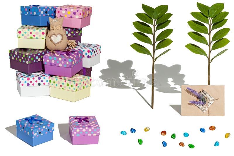 L'ensemble de jouet de chat de photos, boîte-cadeau, a coloré des pierres, les usines, l'e illustration libre de droits