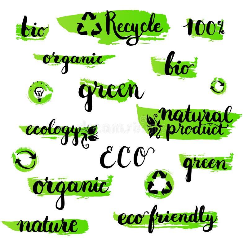 L'ensemble de manuscrit brushpen le mot d'écologie de lettrage et de calligraphie Calibre pour le logo, le label et l'insigne d'e illustration stock