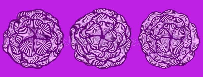 L'ensemble de trois fleurs sur un fond lilas illustration de vecteur