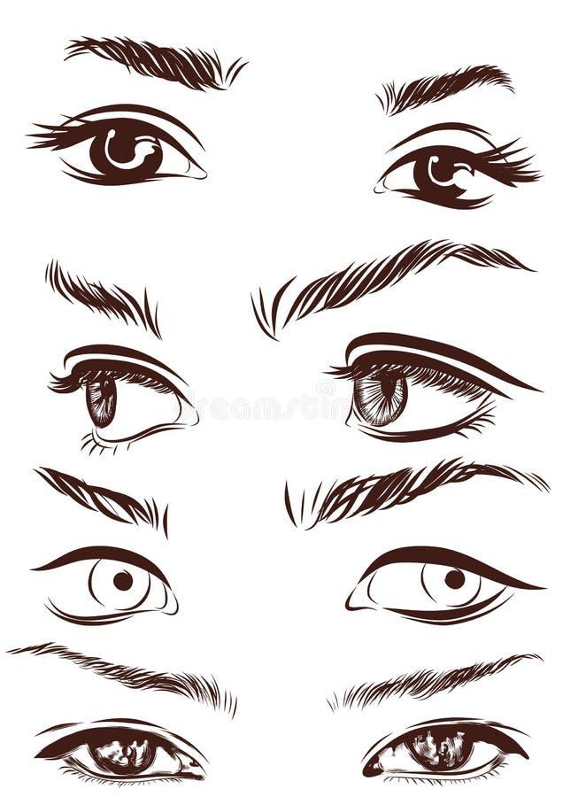 L'ensemble de yeux de femme, les lèvres, les sourcils et les nez en tant qu'esquisse noire conçoivent des éléments Vecteur illustration de vecteur