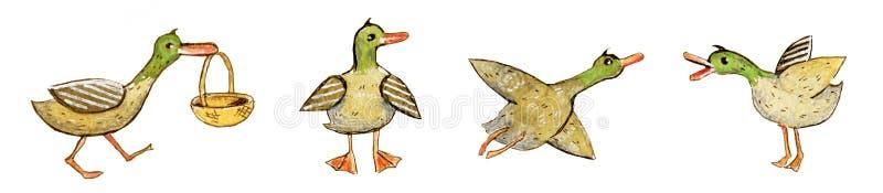 L'ensemble tiré par la main d'illustration d'aquarelle de bande dessinée de position, de vol et allant de canards avec le panier  illustration libre de droits