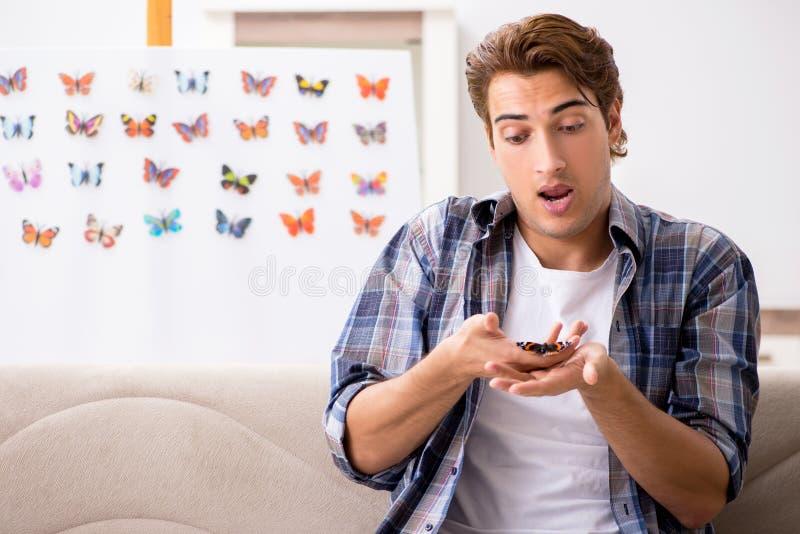 L'entomologo dello studente che studia le nuove specie di farfalle fotografia stock libera da diritti