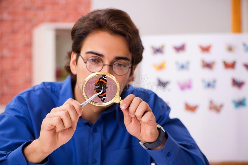 L'entomologo dello studente che studia le nuove specie di farfalle immagine stock libera da diritti