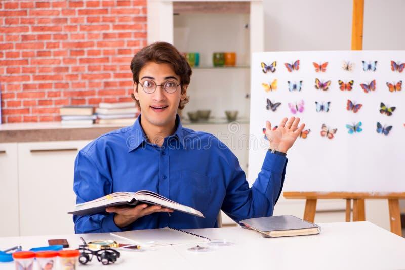 L'entomologo dello studente che studia le nuove specie di farfalle fotografie stock libere da diritti