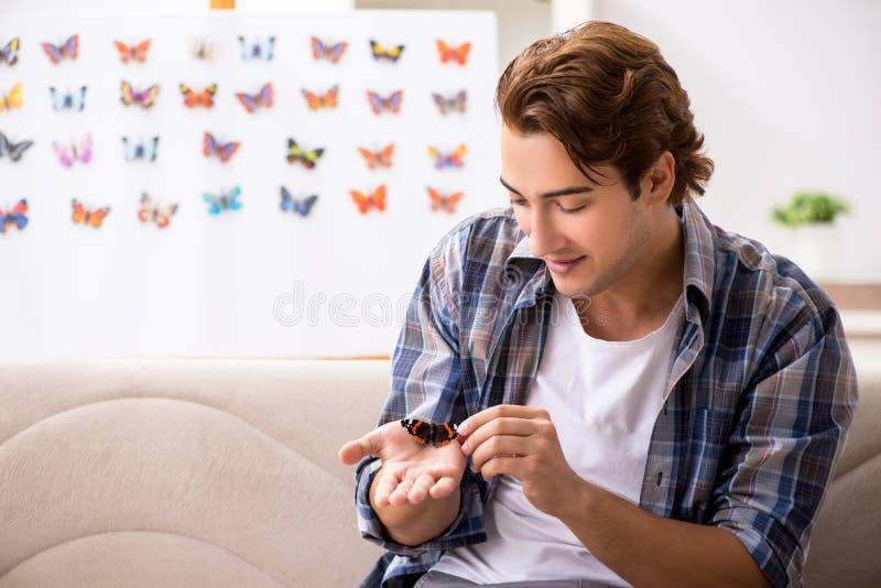 L'entomologo dello studente che studia le nuove specie di farfalle immagini stock libere da diritti