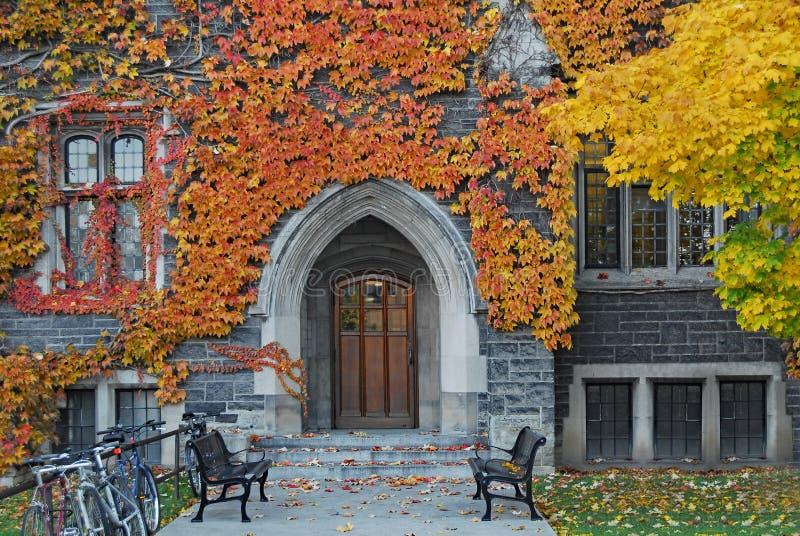 L'entrée au lierre a couvert le bâtiment en pierre gothique d'université de couleurs de chute images libres de droits