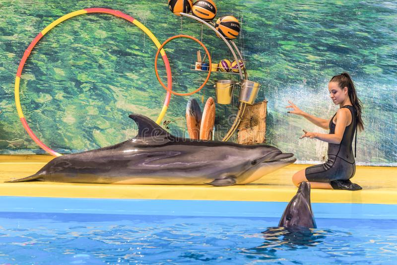 L'entraîneur de fille travaille avec deux dauphins dans le dolphinarium Noir deux image libre de droits