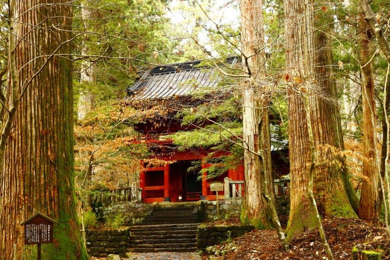 L'entrata principale di piccolo santuario nella foresta di Nikko fotografie stock libere da diritti