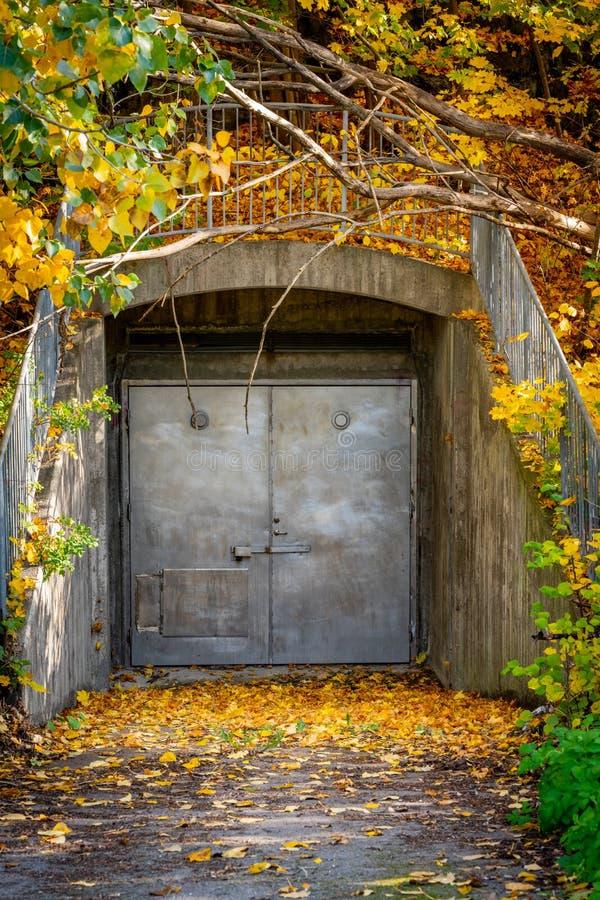 L'entrata sotterranea della vecchia porta d'acciaio grungy chiusa all'aperto coperta di autunno variopinto copre di foglie fotografia stock libera da diritti