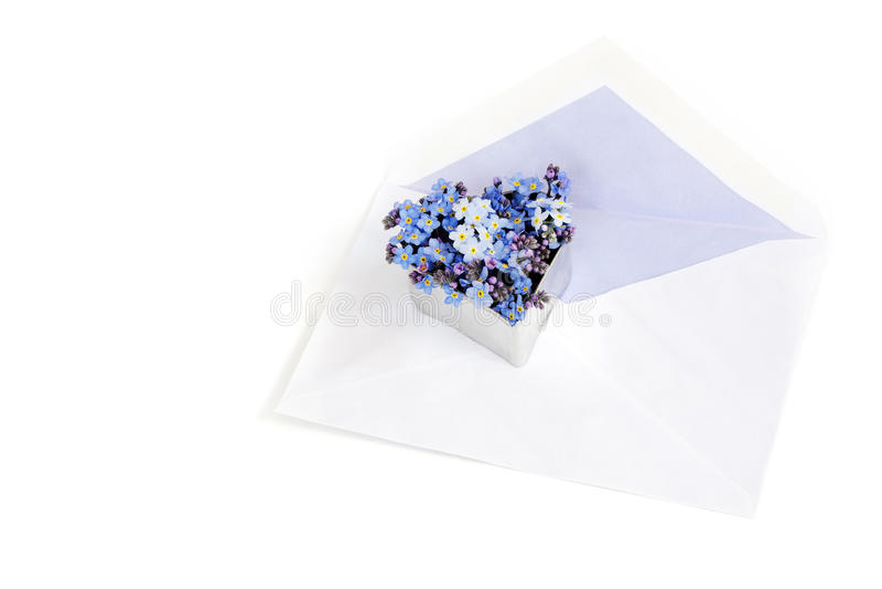 L'enveloppe avec le myosotis fleurit dans une forme de coeur, lett d'amour photos libres de droits