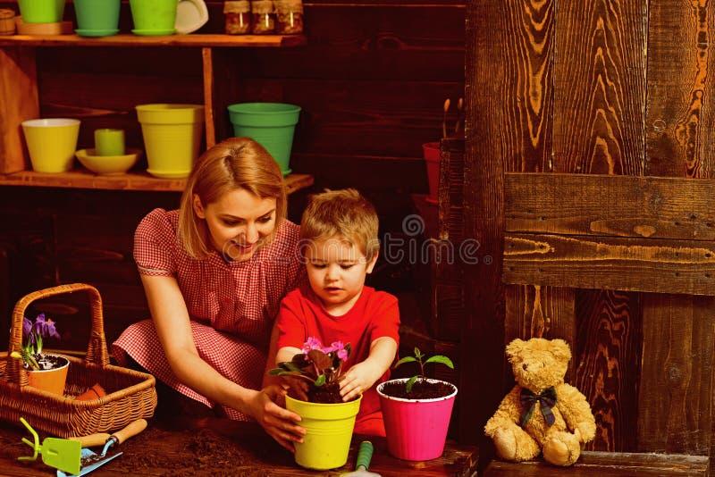 l'environnement de concept de soin de fond a isolé le petit blanc d'arbre de prise Mère d'aide de petit enfant plantant la fleur  photographie stock libre de droits