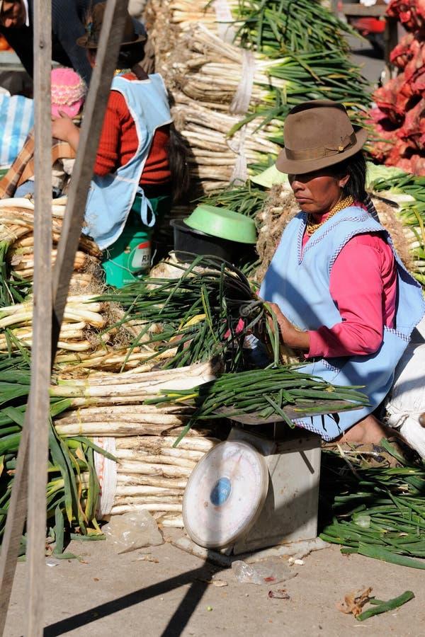 l'Equateur, femme latin ethnique images stock