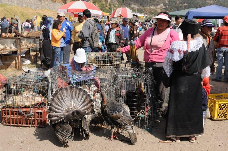 l'Equateur, marché ethnique photographie stock libre de droits