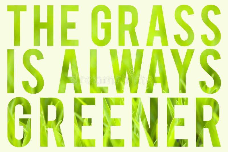 L'erba è sempre più verde fotografie stock