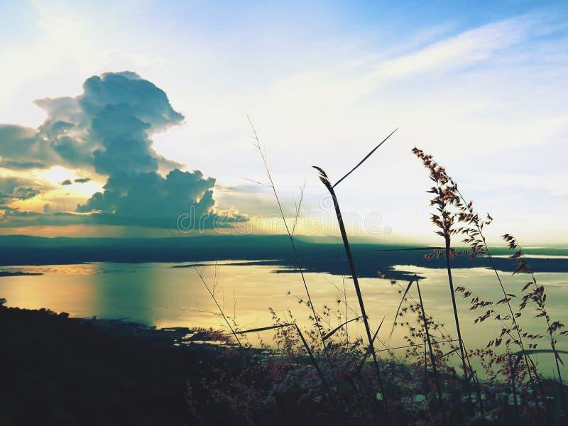 L'erba e le nuvole di fioritura oscurano il sole di sera / Al punto di vista fotografie stock libere da diritti