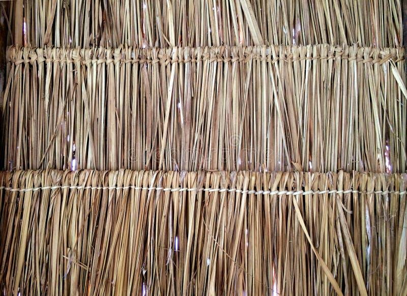 L'erba ricopre di paglia il primo piano del modello del tetto immagini stock