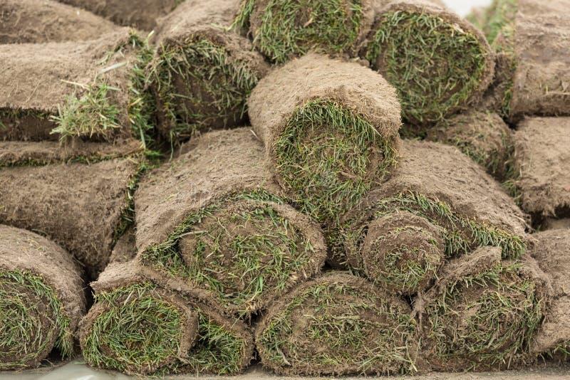L'erba rotolata è impilata, aspetta per il giardinaggio, concetto fotografia stock