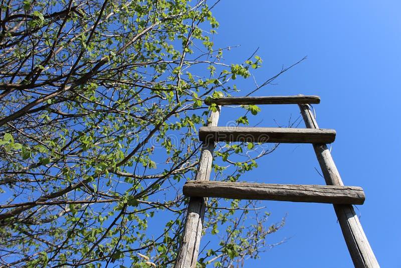 L'escalier en bois se tient sur un fond de ciel bleu images stock